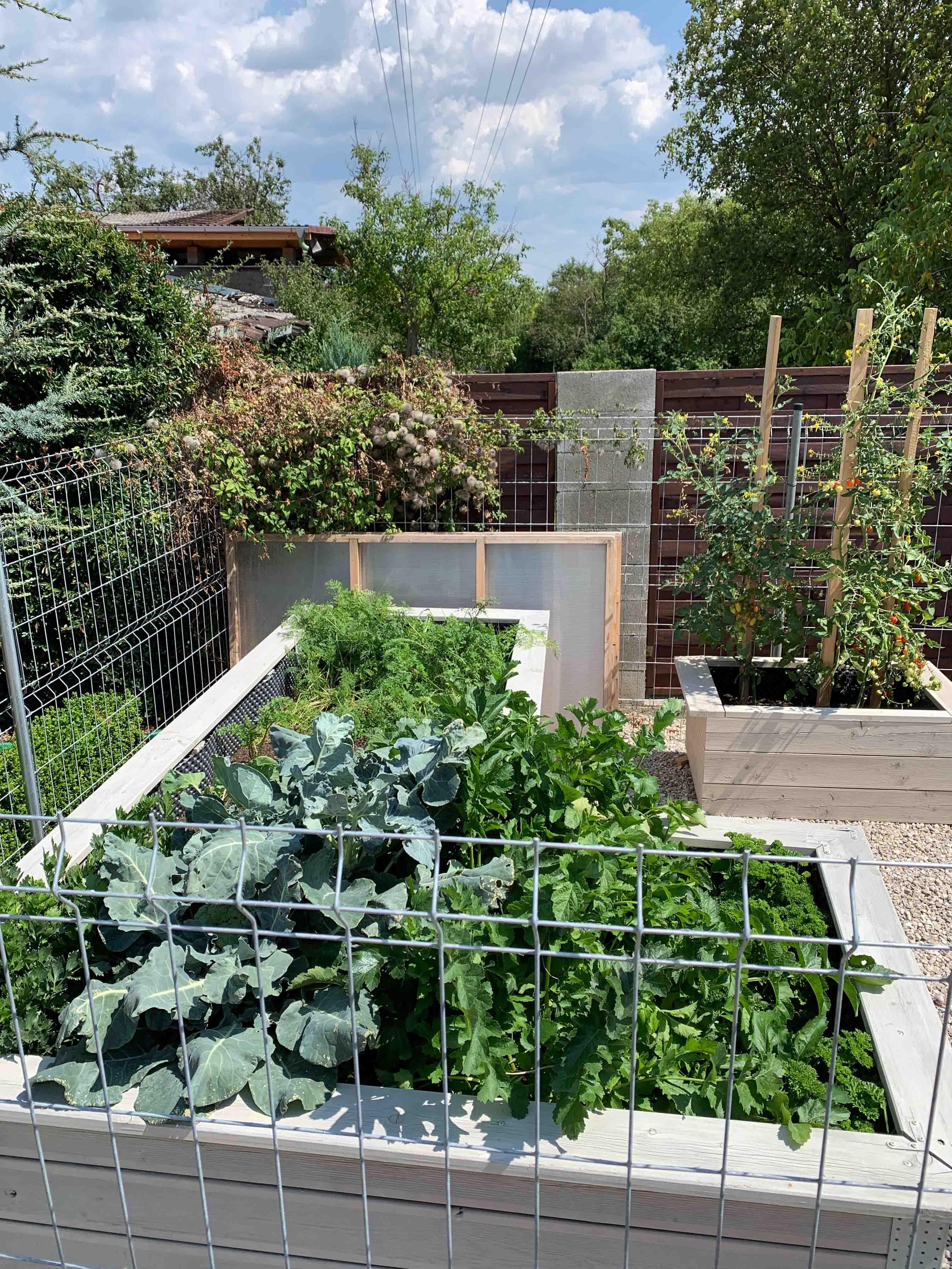 záhony do záhrady
